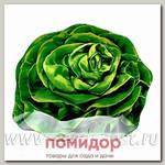 Блюдо сервировочное Walmer Colourful Lettuce, 18х21 см