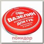 Вазелин косметический для губ Увлажнение и защита со вкусом клубники, 10 г