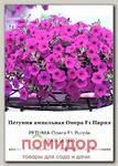 Петуния ампельная Опера Парпл F1, 50 др. СЕМКОМ ПРОФИ Takii seeds