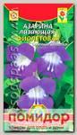 Азарина лазающая Фиолетовая, 10 шт.