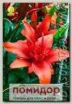 Лилия азиатская махровая RED TWINE, 2 шт.