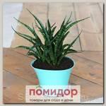 Кашпо Волна Нефритовый, 1,5 л