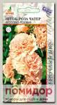 Шток-роза Чатер Лососево-Розовая, 0,1 г