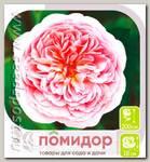 Роза английская АБРАХАМ ДЕРБИ, 1 шт.