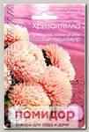 Астра китайская Хризантелла Розовый перламутр, 40 шт.