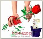 Прихватка пластиковая для защиты рук от шипов роз, 16х12 см ТРЕ-пластик