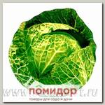 Блюдо сервировочное Walmer Colourful Cabbage, 17х18 см