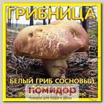 Грибница субстрат микоризный Белый гриб Сосновый форма Ранняя, 1 л