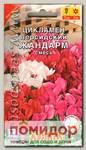 Цикламен персидский Жандарм, Смесь, 3 шт.