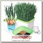Гидропонный проращиватель семян, зёрен и лука ЗДОРОВЬЯ КЛАД АЭРОСАД