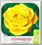 Роза чайно-гибридная ДЕЖАВЮ, 1 шт.