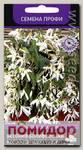 Бегония боливийская Копакабана Белая F1, 5 шт. Профи