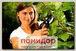 Секатор плоскостной Fiskars SingleStep P26