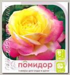 Роза чайно-гибридная ГЛОРИЯ ДЕЙ, 1 шт.