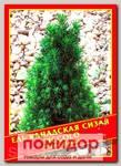 Ель Канадская/Сизая «Piccolo», 10 шт.