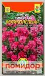 Армерия приморская Великолепная, 0,04 г