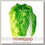 Блюдо сервировочное Walmer Colourful Greenery, 13х18 см