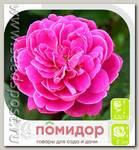 Роза почвопокровная СИРЕНЕВЫЙ ДОЖДЬ, 1 шт.
