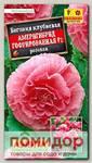 Бегония гофрированная Америгибрид Розовая F1, 5 шт. PanAmerican Seed