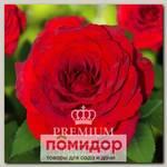Роза Премиум ПАССАЖ, 1 шт. NEW