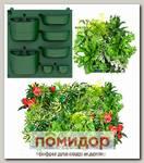 Фитопанно для вертикального озеленения, без рамы