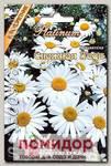 Хризантема Снежная Леди, 8 шт. Platinum
