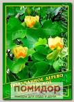 Тюльпанное дерево Китайское, 1 г (30 шт.)