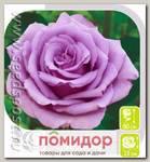 Роза чайно-гибридная ГОЛУБОЙ НИЛ, 1 шт.