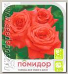 Роза чайно-гибридная НИНА, 1 шт.