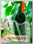 Форма-контейнер для выращивания огурцов, цуккини, томатов, баклажанов Сердце