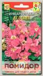 Инкарвиллея Делавея (глоксиния садовая), 9 шт.