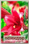 Лилия длинноцветковая MIYABY, 2 шт.