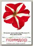 Петуния грандифлора Фалкон Ред энд Вайт F1, 100 др. СЕМКОМ ПРОФИ Sakata
