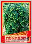 Ель Обыкновенная/Европейская «Pendula», 10 шт.