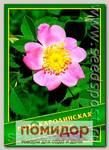 Роза Каролинская, 0,5 г (40 шт.)