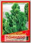 Кипарисовик Туполистный «Nana», 0,2 г
