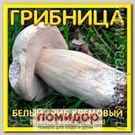 Грибница субстрат микоризный Белый гриб Кремовый, 1 л