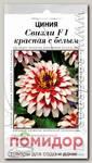 Цинния Свизли Красная с белым, 5 шт. Профессиональные семена