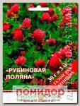 Газон для ленивых Рубиновая поляна, 30 г