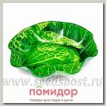 Салатник Walmer Colourful Cabbage, 19х19 см