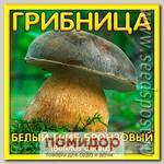 Грибница субстрат микоризный Белый гриб Бронзовый, 1 л