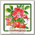 Прихватка Ягоды-фрукты (шиповник)