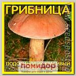 Грибница субстрат микоризный Подосиновик Красивый, 1 л