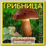 Грибница субстрат микоризный Польский гриб, 1 л