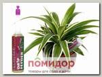 Капельный дозатор (Питание для комнатных растений) Houseplant Focus Drip Feeders, 38 мл