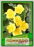 Фремонтодендрон Калифорнийский, 0,1 г (3 шт.)