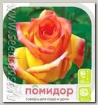 Роза чайно-гибридная АМБИАНС, 1 шт.