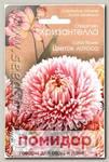 Астра китайская Хризантелла Цветок Лотоса, 40 шт.