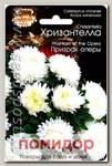 Астра китайская Хризантелла Призрак оперы, 40 шт.