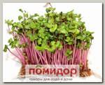 Набор для выращивания микрозелени Редис Чайна Роуз